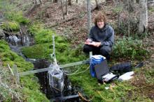 Kan skogsbrukets klimatnytta öka genom smartare bäckkantzoner?