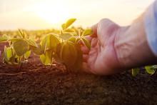 Kestävämmät tuotantomenetelmät ovat Lidlin ympäristövaikutusten vähentämisen ydin
