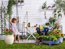 Välkommen till pressfrukost för Nordiska Trädgårdar
