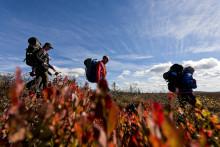 Förlängd säsong kan locka fler tyska besökare till Sverige