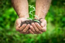 Guide: Sådan gør du dit forbrug mere klimavenligt
