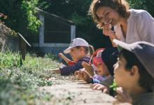 Årets miljöpris Terre de Femmes hyllar bevarandet av nationalskogen Bussaco