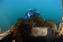 Ni nye tildelinger: Bevaring av kulturminner, søppelrydding i sjøen, kunst og vinteridrett
