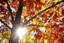 Kraftig økning i strømprisen i oktober