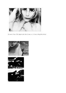 Information om konstverk av Gunvor Nelson