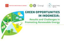Invitation: 10 år med den grønne omstilling i Indonesien