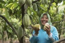 El programa 'Cocoa Life' de Mondelēz Internacional empodera a agricultores y comunidades de Indonesia