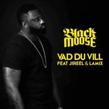 """DJ Black Moose släpper singeln """"Vad Du Vill"""" feat. Jireel & Lamix"""