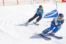 Skicross SM Skidor 5 april 2013 i Kläppen Snowpark