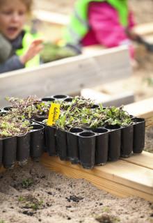 Pressinbjudan: Besök några av Malmös senaste gröna innovationer