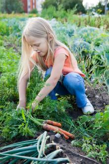 Ta hjälp av barnen i trädgården – Bakker lanserar trädgårdsredskap och utforskarset för barn!
