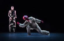 Från Parisoperan till Kungliga Operan i Stockholm – två verk från den franska balettvärldens toppskikt under samma kväll: Dancing Forward