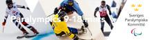 Sveriges Paralympiska trupp till PyeongChang presenterad
