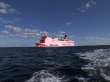 Aprilspøk: Stena Saga hedrer Giro d'Italia-starten i Danmark - males rosa