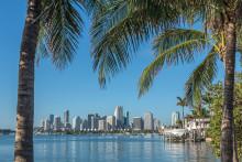 Miami, London och Kanarieöarna vinnare på sportlovet
