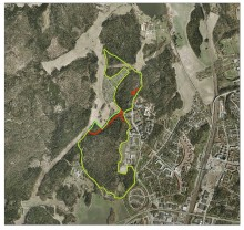 Pressmeddelande: Bergaskogen och västra Runbyskogen skyddas i Väsby.
