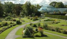 Nu står växterna i Bergianska trädgården enligt aktuell forskning