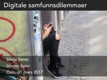 Foredrag av Silvia Seres til Bydel Stovner 1 mars 2017