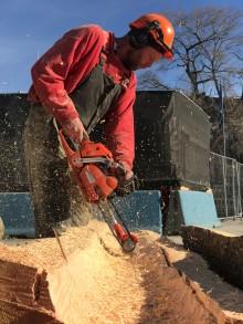 Trær fra Botanisk hage blir kunst på Nobels Fredssenter