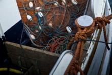 2013 års fiskekvoter för Östersjön nu klara