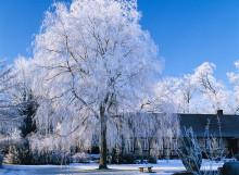 Värmesäkra ditt hem och spara tusenlappar i vinter