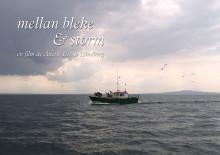 Filmsläpp: Mellan bleke & storm
