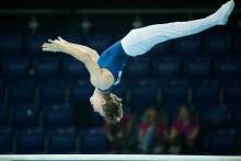 Stor konkurrens på EM i manlig artistisk gymnastik