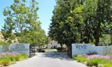 Helhet och hållbarhet hos Wente Vineyards