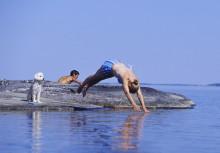 Ny webbplats – Miljöläget längs Svealands kust