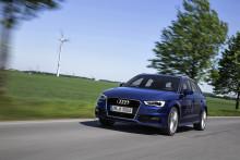 Audi får Stora Förnybarhetspriset 2013