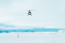 Am Ende der Welt: der #alphaddicted Koffer in der Antarktis