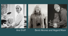 Festivalutstillingen The Micro Challenge - et samarbeid mellom NTNU og Trondheim kunstmuseum
