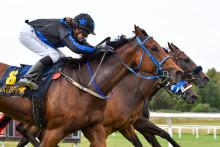 Hemmahäst tog hem Göteborgs Stora Pris med en nos