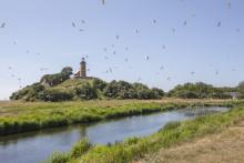Veteraner skal passe natur og bygninger på Sprogø