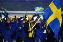 Ett år kvar till Pyeongchang - OS-hjälten Södergren ny längdexpert