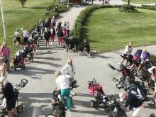 Succé för Hjärtgolfen, 700 deltagare från hela Sverige!!
