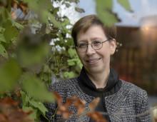 Stark samsyn bakom ny framgång: Nordiska riktlinjer på plats för neuroendokrina tumörer