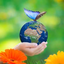 Klimat- och Energikicken 2019