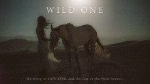 SAIE SAIE embarks on a two month tour on horseback to save the last Wild Horses of the US armed with her music and voice