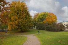 Vasaparken i Göteborg till salu för 5 000 kronor