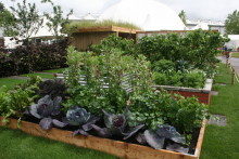 'Health for Life in the community' show garden at BBC Gardeners' World Live