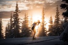 Kjære skiskyttervenner!