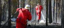 Försäkringsskadornas kostnader från sommarens skogsbränder är lägre än förväntat