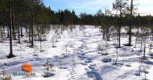 Dialogmöte om utmaningar, möjligheter och delaktighet i viltförvaltningen för Värmlands län