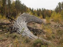 Ängelholms kommun bjuder in till konstvisning i Kronoskogen