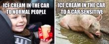 Er du bilsensitiv?