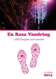 Lights in Alingsås arrangerar föreläsnings- och mingelkväll till stöd för kampen mot cancer