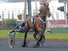 Fem svensktränade hästar matchas mot Prix d'Amérique