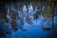 Ny strategi för att skydda Europas vatten