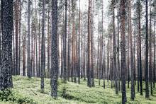 Consid ingår avtal med Naturvårdsverket